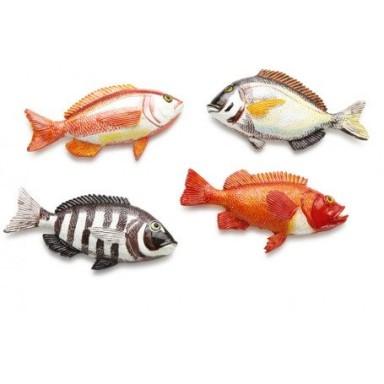 Imanes Peces Pesca Decoración