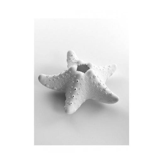 Vela Estrella de Mar Decoración