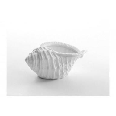 Vela Caracola de Mar Decoración (4u)
