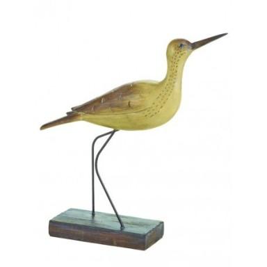 Pájaro Chevalier Marino