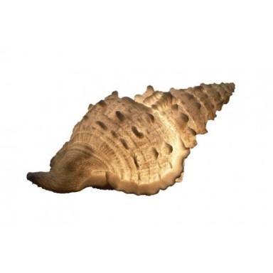 Lámpara Náutica Caracola (1u)