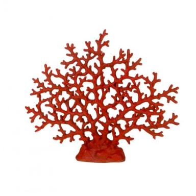 Coral Marino Decorativo