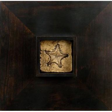 Cuadro Marino Estrella Decoración Náutica